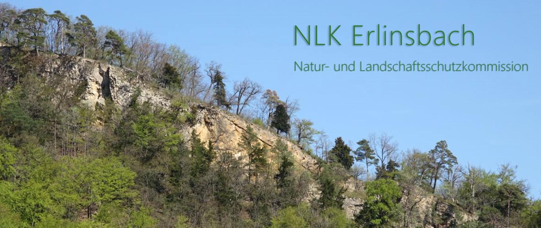 NLK Erlinsbach